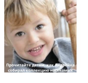 prochitajte-detyam-kak-andrejka-sobiral-kollekcziyu-nasekomyh.png